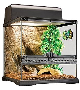 Exo Terra Invertebrate Habitat Reptile Terrarium Kit Amazon Co Uk