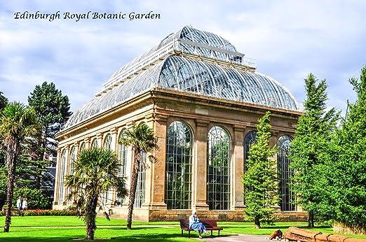 Imán grande para nevera, diseño de jardín botánico de Edimburgo, tamaño real: Amazon.es: Hogar