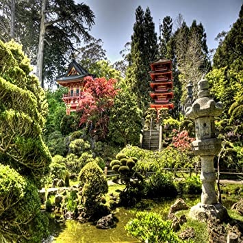 Amazon Com Japanese Zen Garden Live Wallpaper Free Appstore For