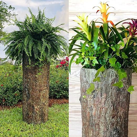 Bushy Box - Macetero hueco grande para troncos Maceta para jardín, patio y porche Funda para bomba