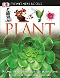DK Eyewitness Books: Plant: Discover the Fascinating World of Plants from Flowers and Fruit to Plants That Sting