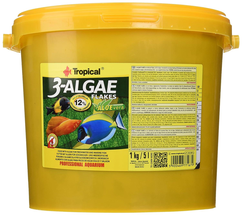 Tropical de 3 Algae Flakes, 1er Pack (1 x 5 l): Amazon.es: Productos ...