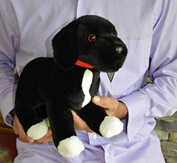 Amazon Com Black Lab Pit Bull Mix Dog Stuffed Animal Therapy