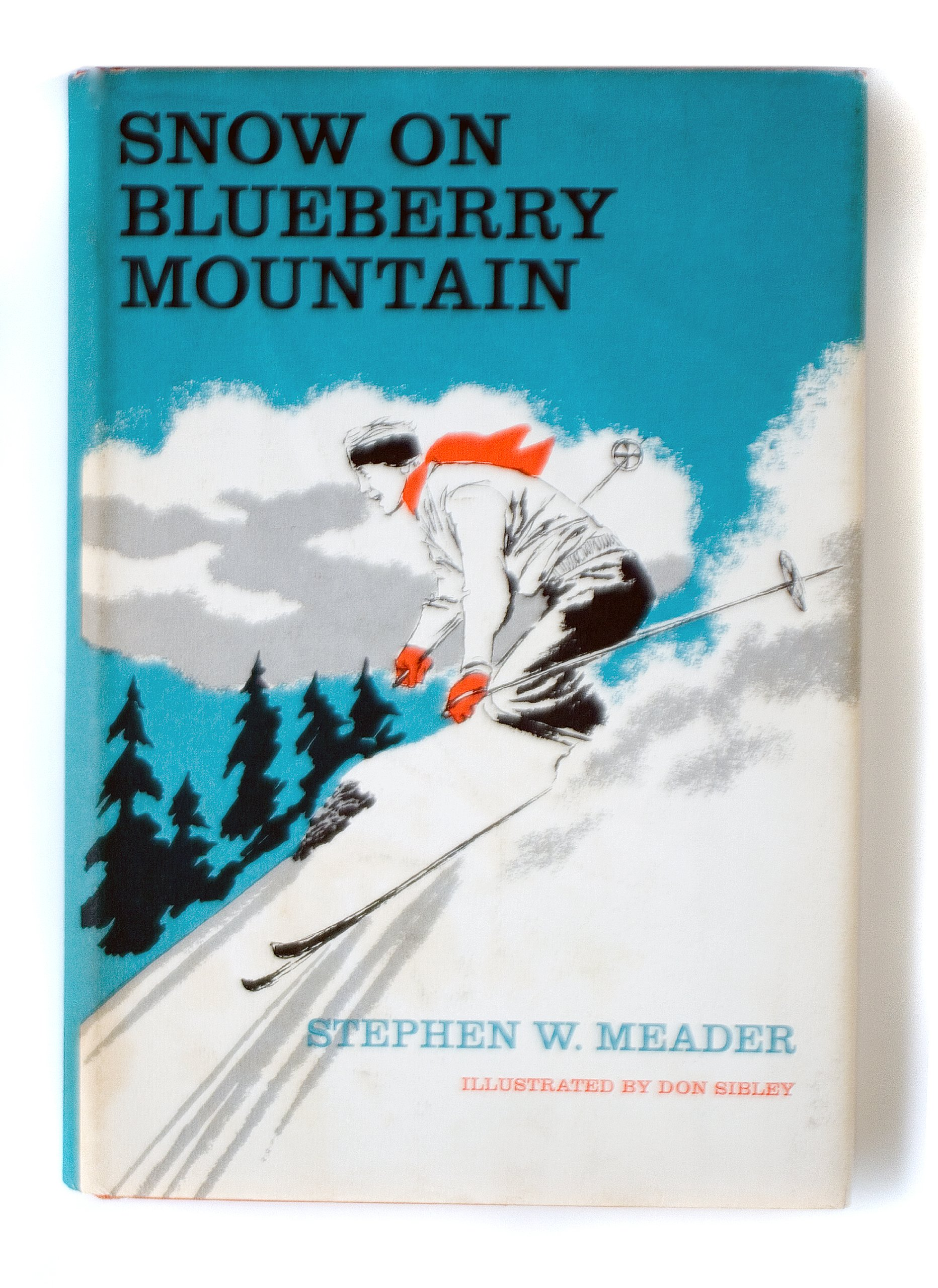 Read Online Snow on Blueberry Mountain pdf epub