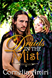 Druids In The Mist (The sequel is The Warrior and the Druidess Book 1)