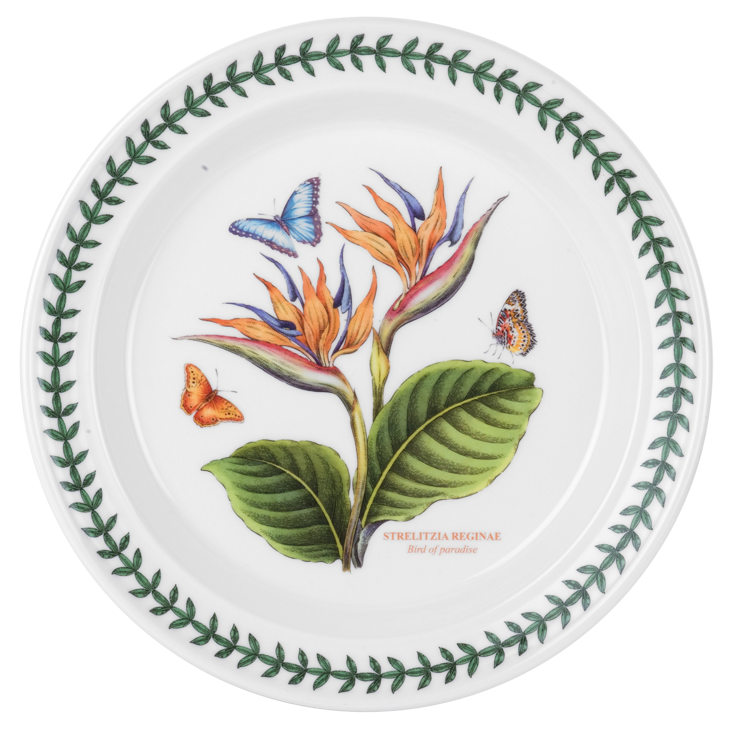 Portmeirion Exotic Botanic Garden Dinner Plate with Bird of Paradise Motif, Set of 6