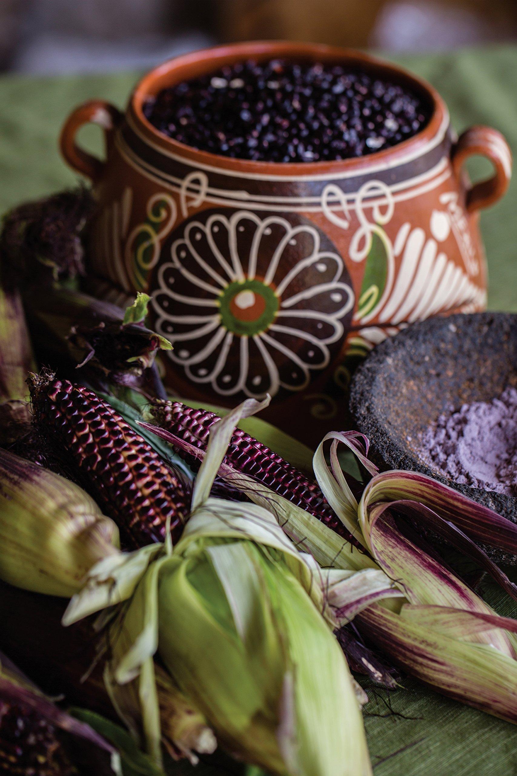 Burpee Suntava Full Season Purple Sweet Corn Seeds 300 seeds by Burpee (Image #4)