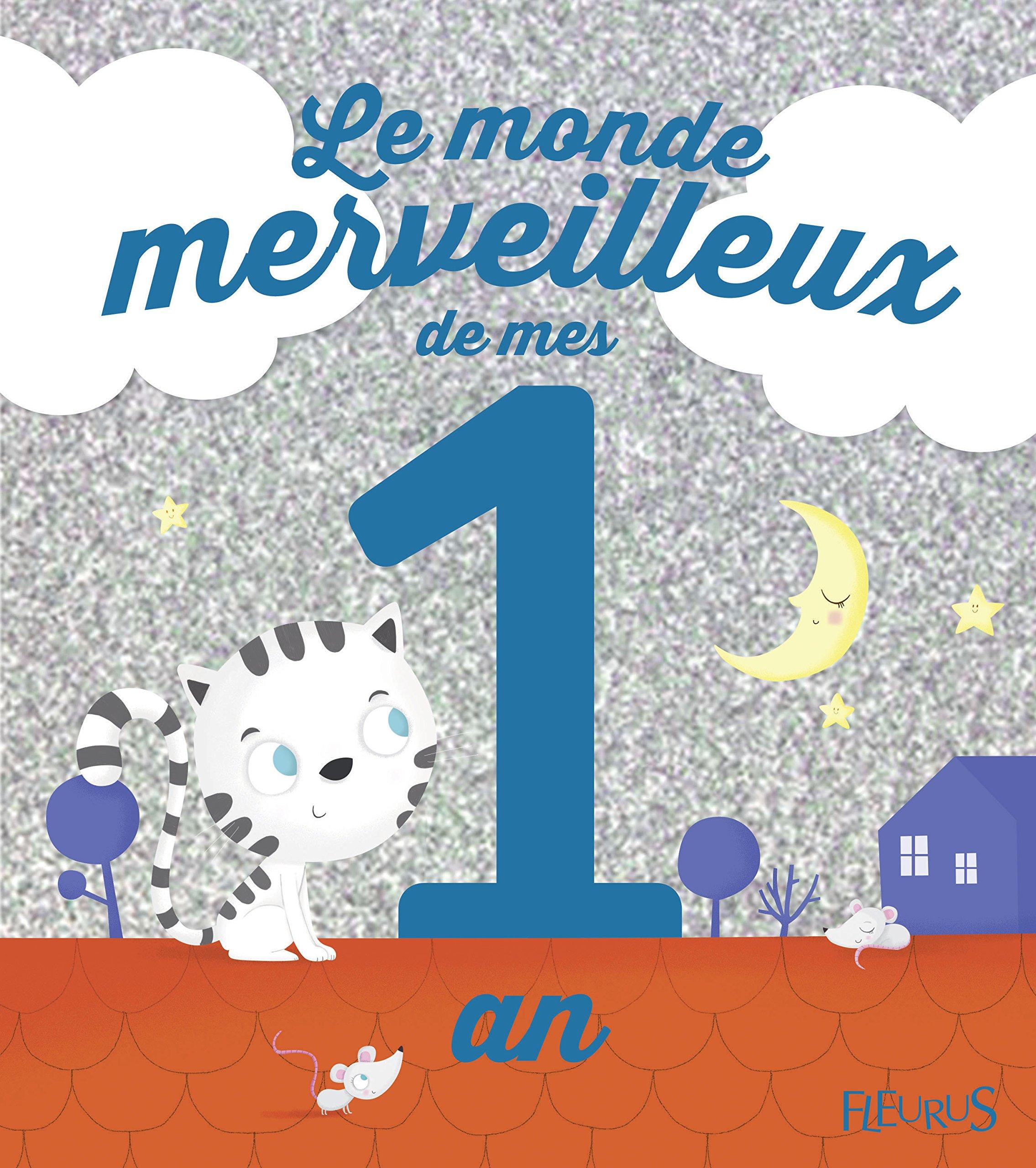Amazon Fr Le Monde Merveilleux De Mes 1 An Pour Les Garcons