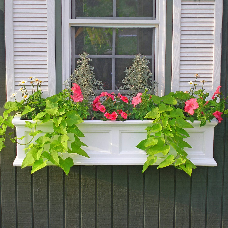 Amazon Mayne Fairfield 5822W Window Box Planter 3 Foot
