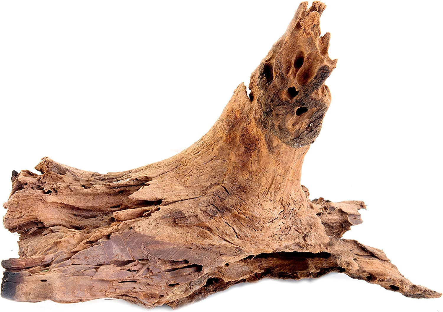 SuperMoss (23296) Driftwood for Air Plants, Natural