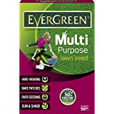 EverGreen Multi Purpose Lawn Grass Seed Carton, 1.6 kg