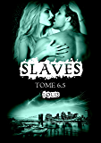 Slaves, Tome 6,5 : Louis