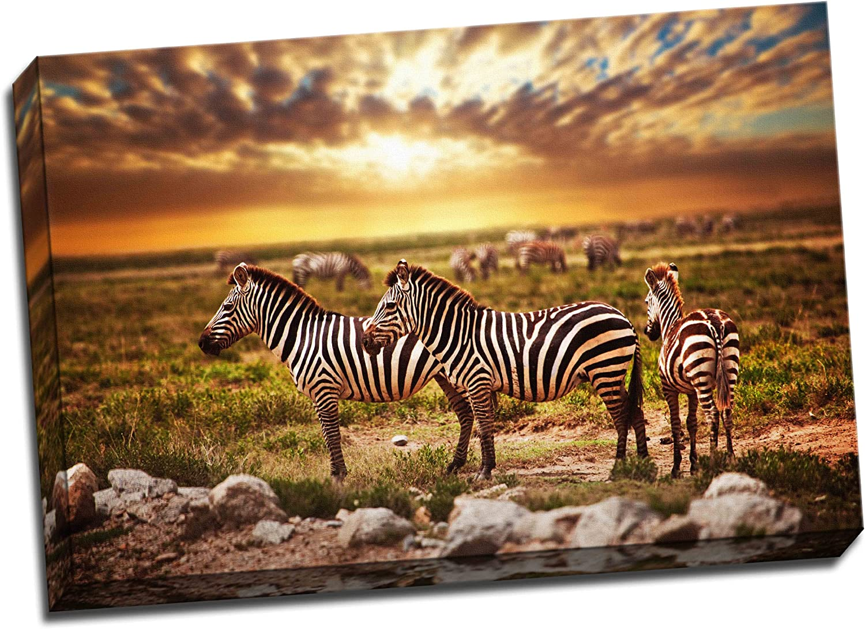 Zebra Home Decor Serengeti Sunset Poster Art Print