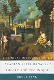 Amazon the lacanian subject 9780691015897 bruce fink books a clinical introduction to lacanian psychoanalysis theory and technique fandeluxe Gallery
