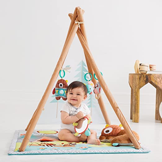 Baby Infant and Toddler Activity Gym