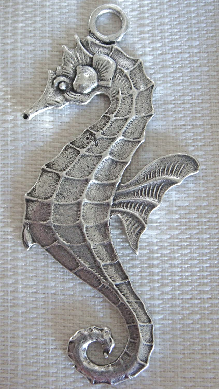 Amazon.com: Seahorse Shower Curtain Hook Add-on -Antique Silver ...