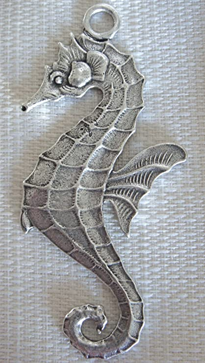 Image Unavailable Not Available For Color Seahorse Shower Curtain Hook