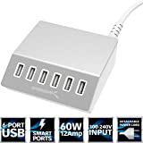Sabrent Premium 60 Watt (12 Amp) 6-Port Aluminum Family-Sized Desktop USB Rapid Charger. Smart USB Charger with Auto Detect Technology [Silver] (AX-FLCH)