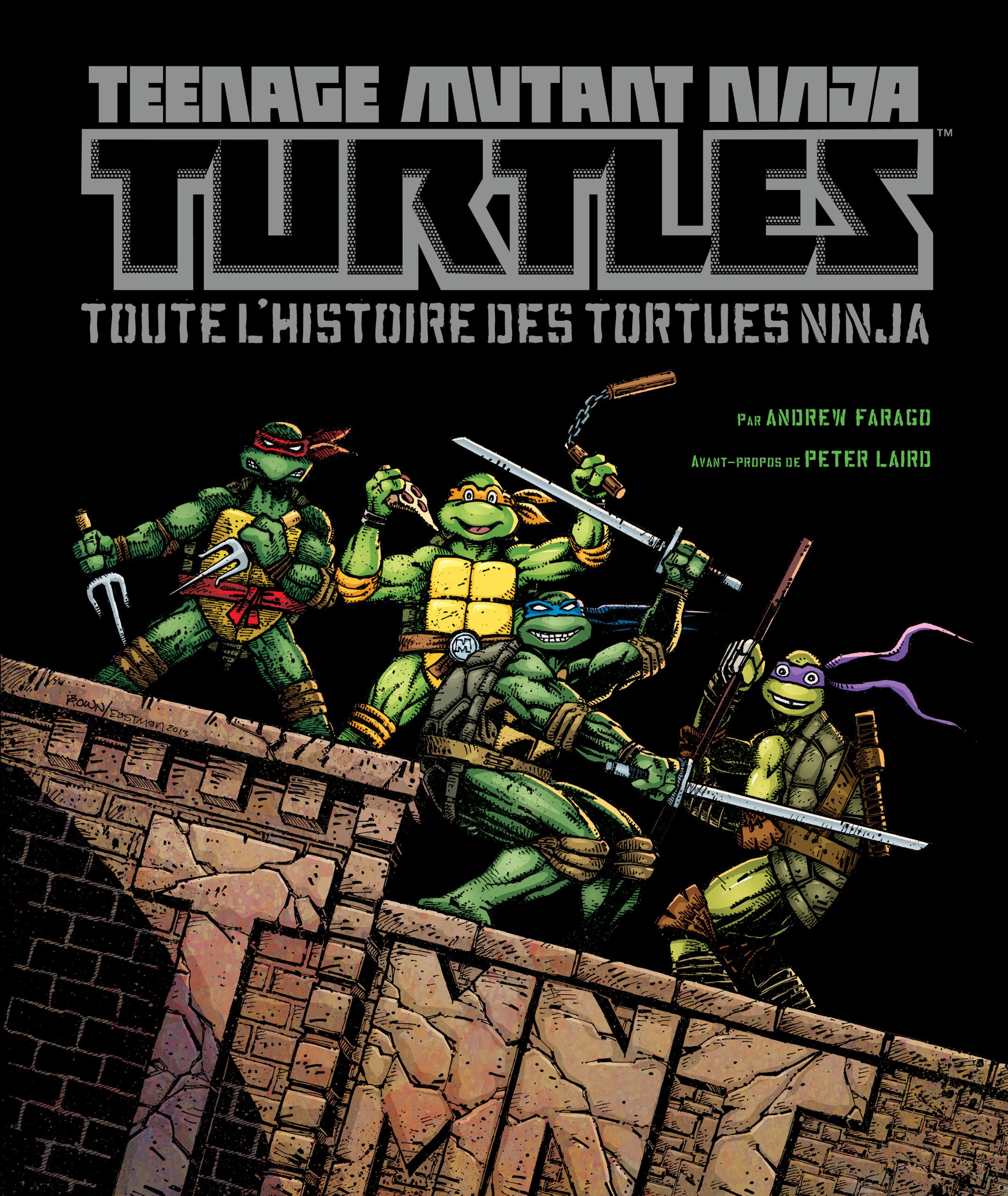 Teenage Mutant Ninja Turtles : Toute lhistoire des Tortues ...
