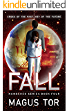 Fall: Cross of the past, key of the future (Numbered Book 4)