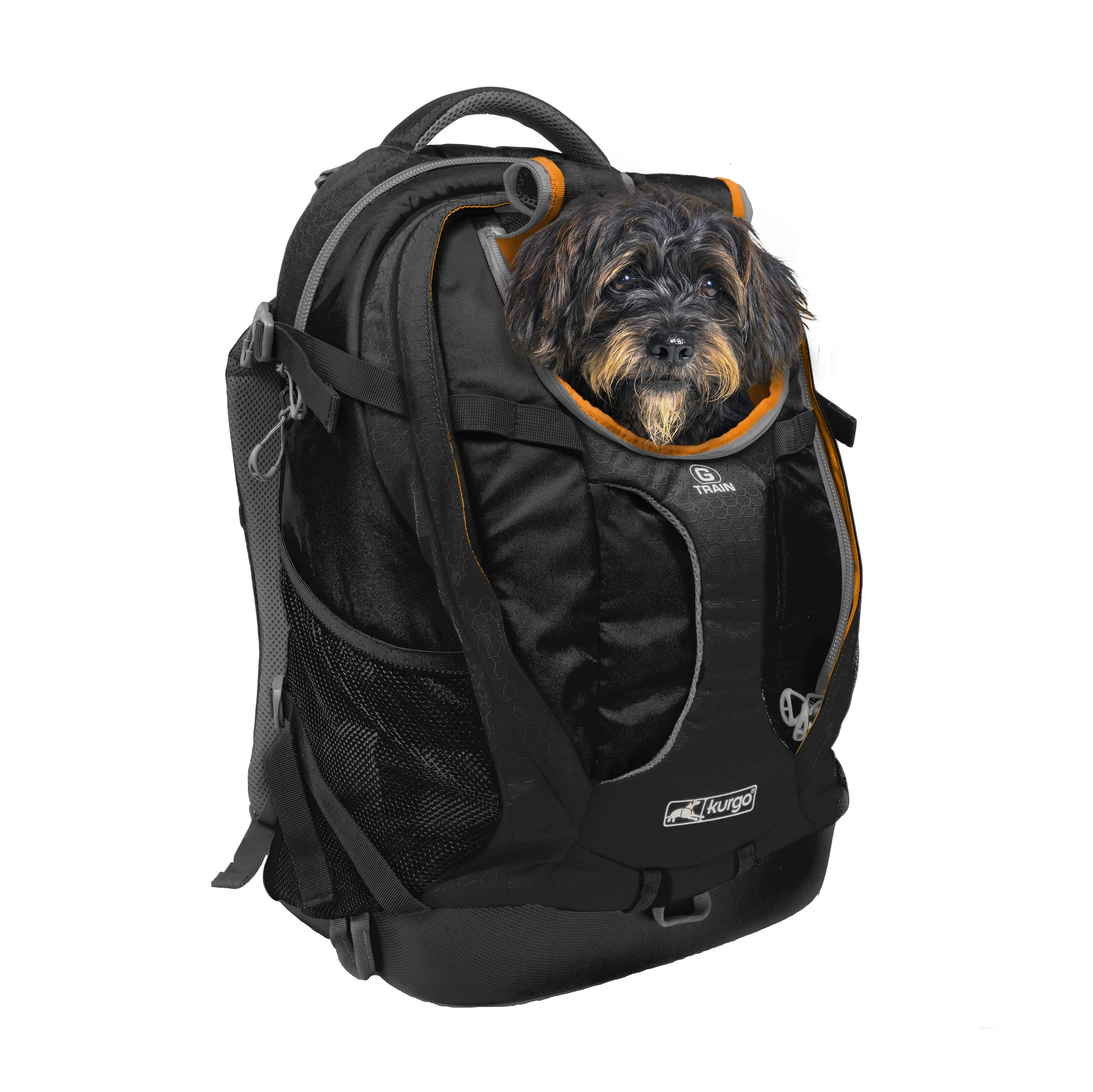 Kurgo Dog Carrier Backpack for Small Dogs & Cats | G-Train Pet Backpack Carrier | Airline Approved | Cat Backpack | Small Dog Backpack for Hiking & Travel | Lightweight | Waterproof Bottom (Black) by Kurgo