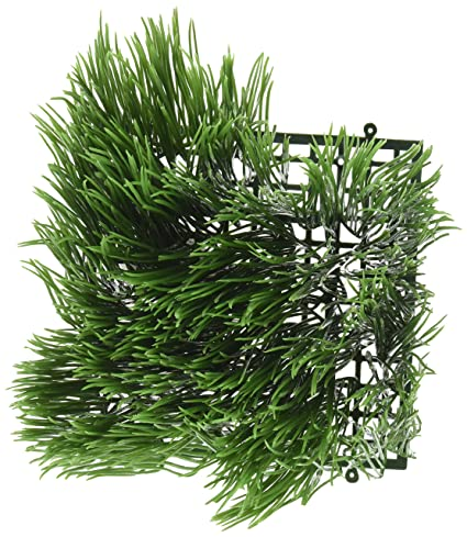 Amazoncom Living Whole Foods Artificial Wheat Grass Fake Soft PVC