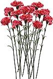 Fourwalls Single Carnation (Set of 15, Dark Pink)
