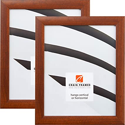 Amazoncom Craig Frames 23247616 20 X 27 Inch Picture Frame