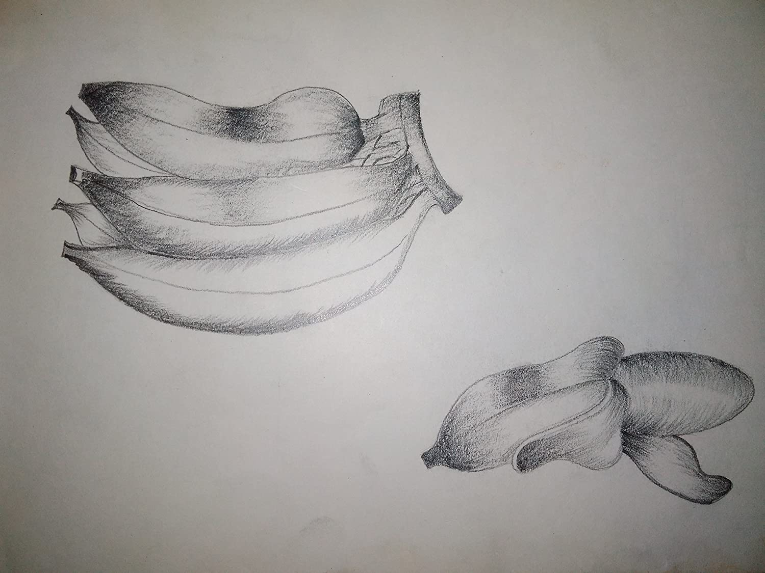 Pencil drawing banana amazon in home kitchen