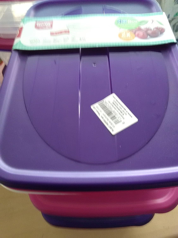 Lote de 2 cajas de conservación, almacenaje, congelación ...