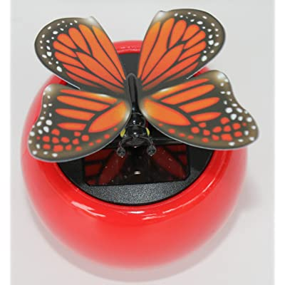 Solar Dancing Butterfly, Moves Wings: Home Improvement