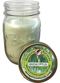 Amazon.com : NATURAL Mosquito Repellent Premium Soy Wax Tin Candle ...