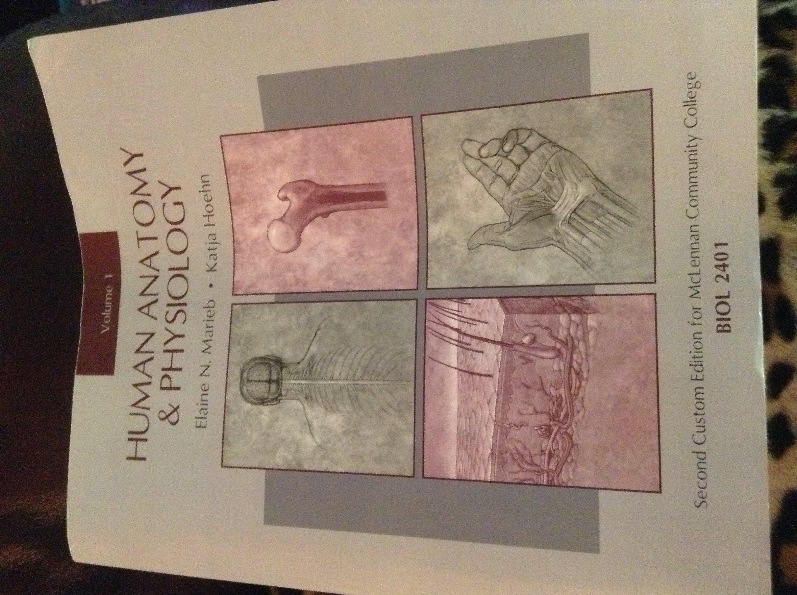 Human Anatomy and Physiology: Katja Hoehn Elaine Marieb ...