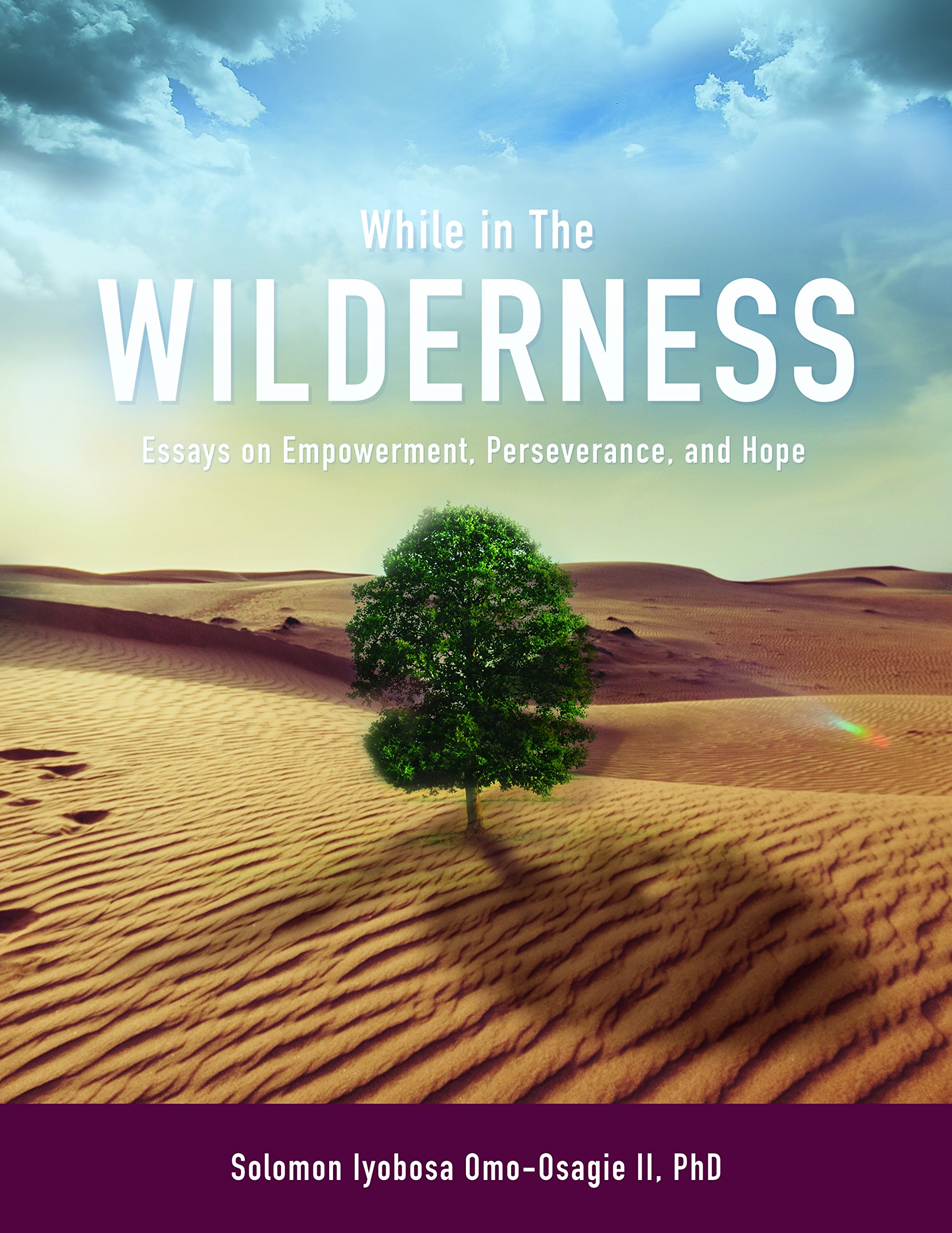 While In The Wilderness Essays On Empowerment Perseverance And  While In The Wilderness Essays On Empowerment Perseverance And Hope  Solomon Iyobosa Omoosagie Ii  Amazoncom Books