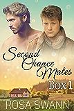 Second Chance Mates Box 1: Mpreg Alpha-Omega Non-Shifter Romance (Second Chance Mates Box Set)