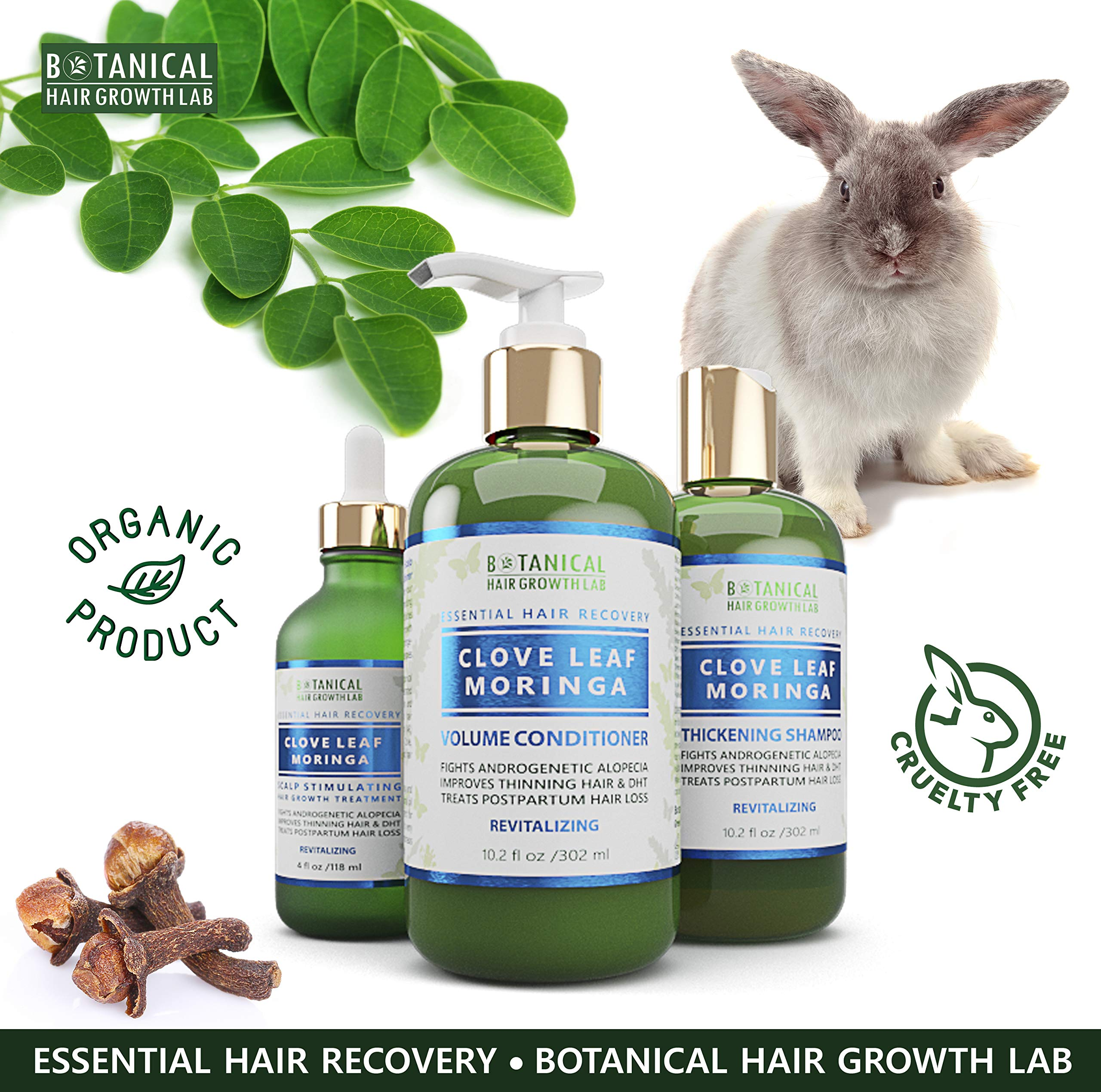 Botanical Hair Growth Lab Biotin Conditioner - Clove Leaf Moringa Formula - Anti Hair Loss Complex - DHT Blockers, Sulfate Free, Natural Ingredients for Men & Women by BOTANICAL HAIR GROWTH LAB (Image #8)