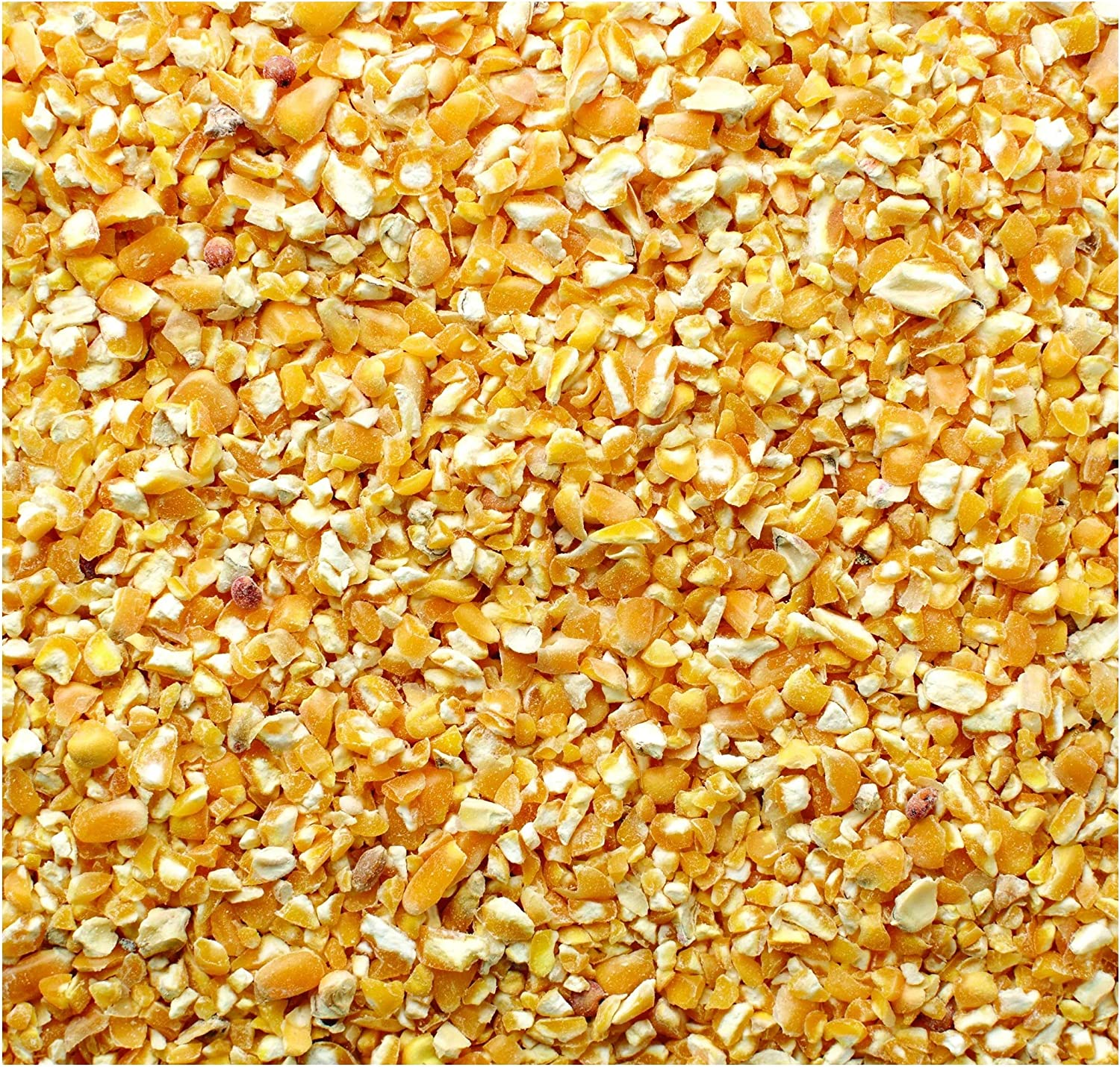 ESKS 10lbs Organic Cracked Corn for Whiskey Shine Bourbon Mash No Chemicals or Pesticides Yellow