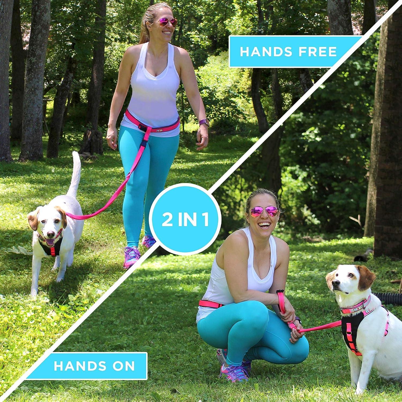 PAWTITAS Laufende Hundeleine H/ände frei eine reflektierende Laufleine mit Verstellbarer Taille und 4 Fu/ß gepolsterter Leine zum Laufen Welpentraining Hundeleine H/ände frei. Gehen Wandern