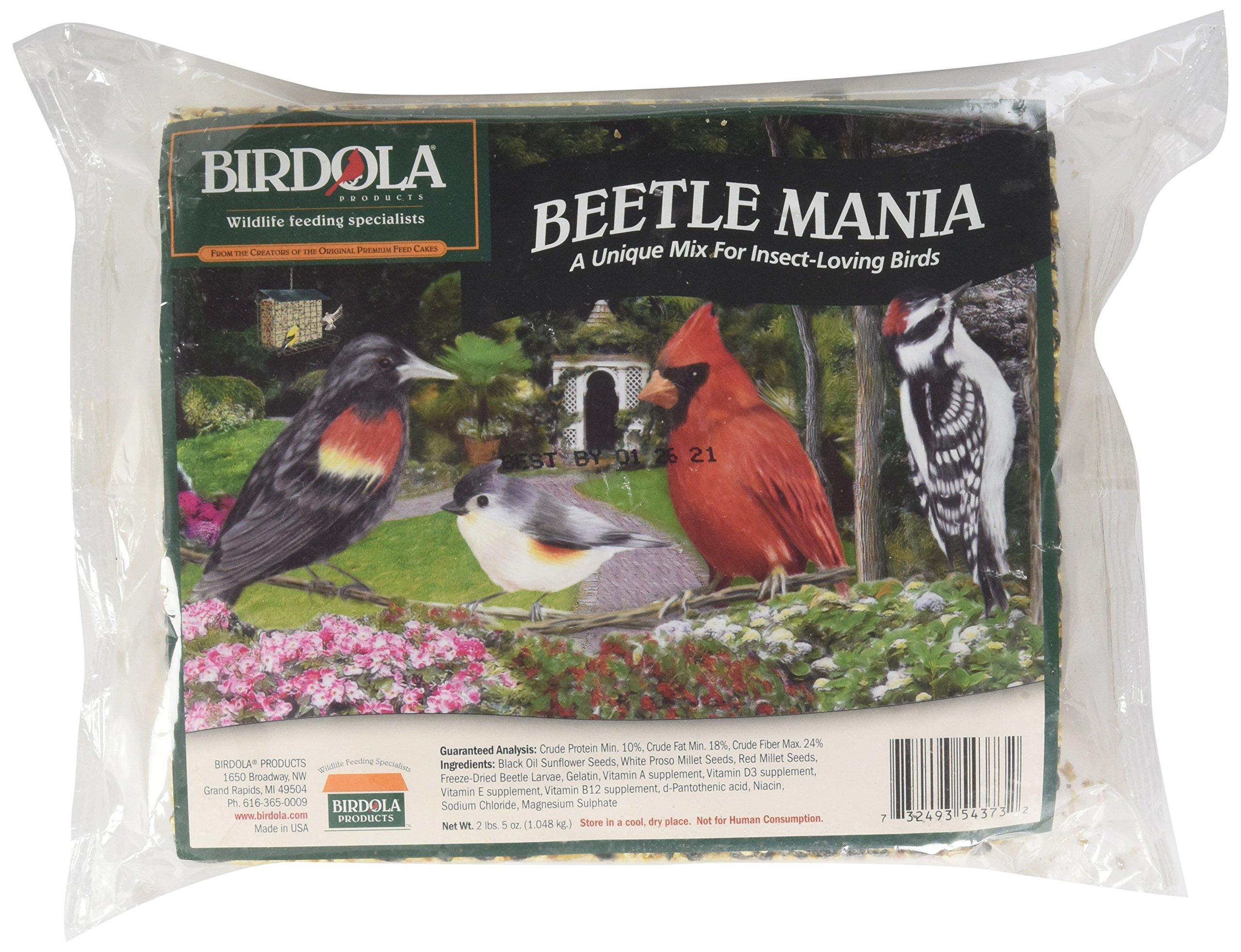 Birdola Beetle Mania Seed Cake 2.2 Pounds, For Insect-Loving Wild Birds by Birdola (Image #1)