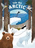 Look Closer: Into the Arctic: [With Transparent Pages]