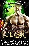 Le Souffle du Feu: Cezar: Une Romance Paranormale (Dragons du Bayou t. 2)