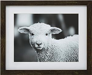Amazon Brand – Stone & Beam Modern Black and White Lamb Photo Wall Art Decor - 18 x 22 Inch Frame, Rustic Brown