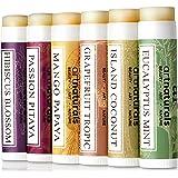 Art Naturals Lip balm balsamo per labbra set - (6 x 0,5 oz/4,25 g)