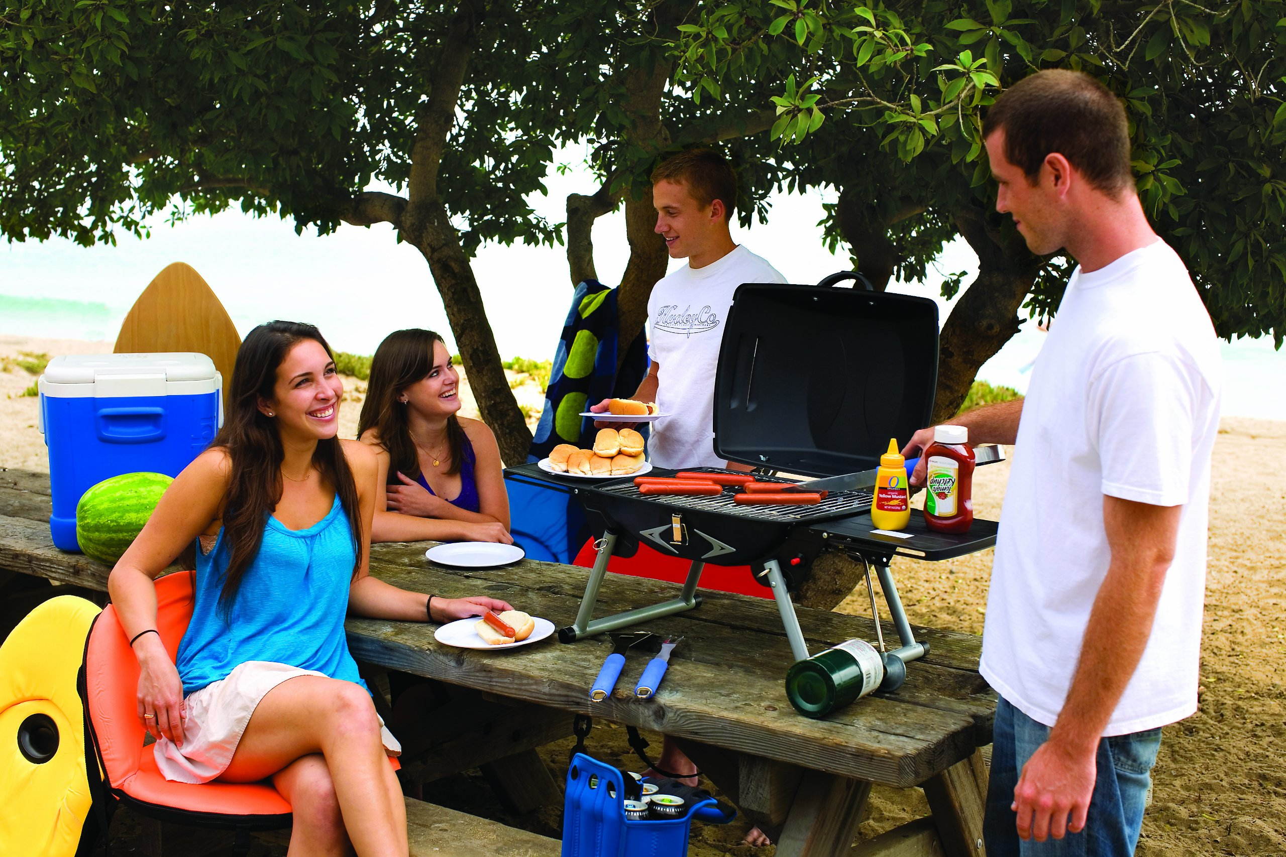 Picnic Time Portagrillo Portable Propane BBQ Grill by ONIVA - a Picnic Time brand (Image #6)
