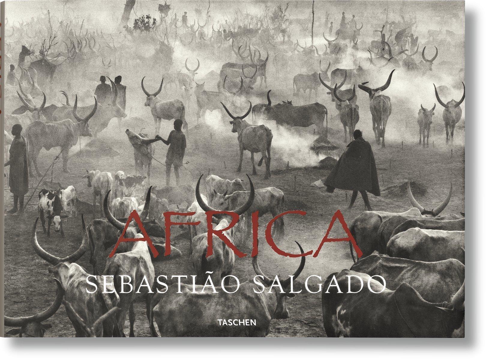 Salgado, Africa