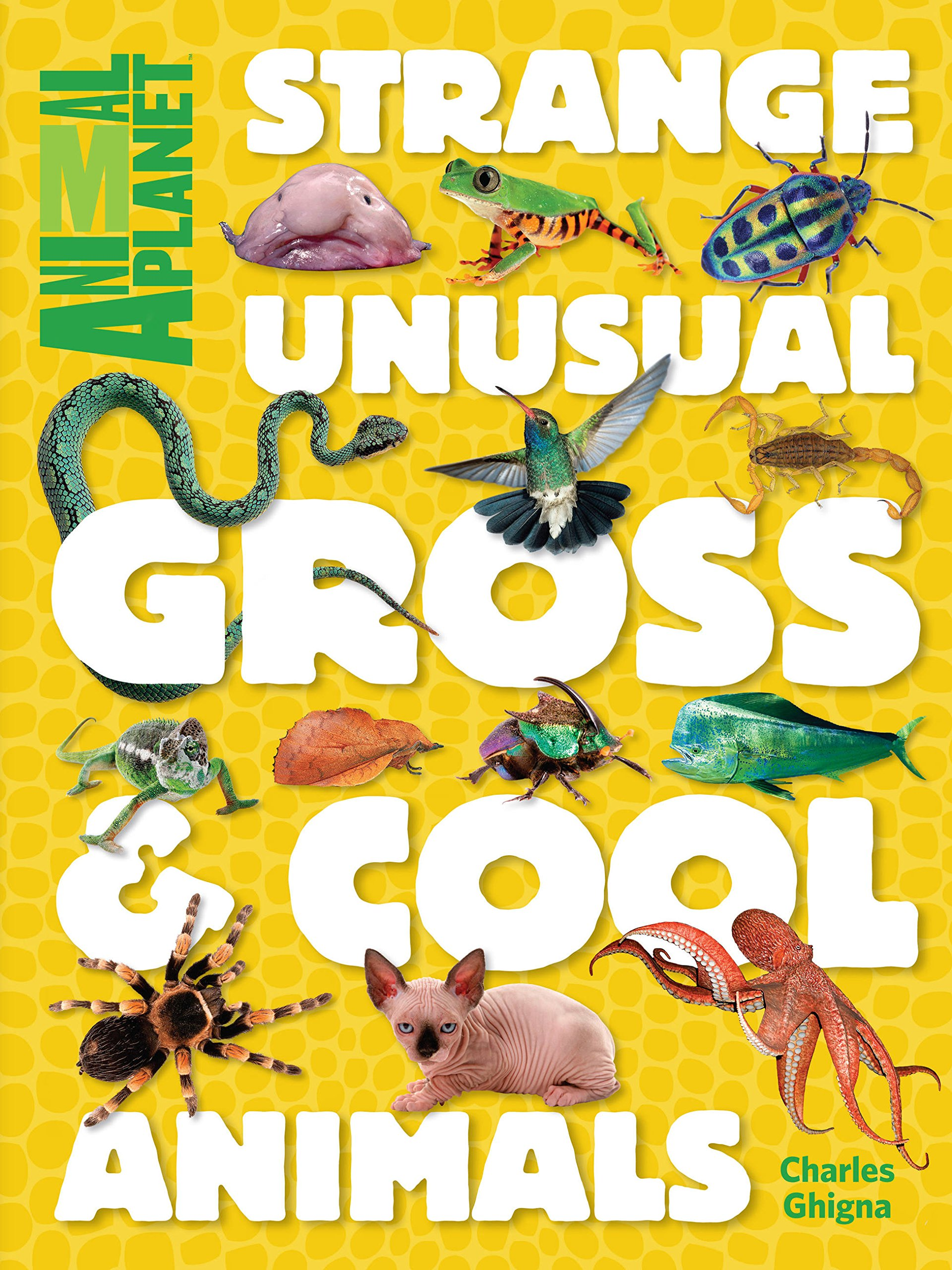 Read Online Strange, Unusual, Gross & Cool Animals (An Animal Planet Book) PDF