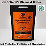 Cognito Smartcoffee The Uk S First Nootropic Coffee Premium