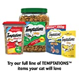 Temptations ShakeUps Crunchy and Soft Cat