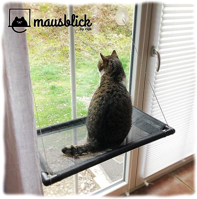 riijk Hamaca para Gatos, para Mirar el Exterior a través de la Ventana. Práctica Cama para Gatos para el alféizar de la Ventana: Amazon.es: Productos para mascotas