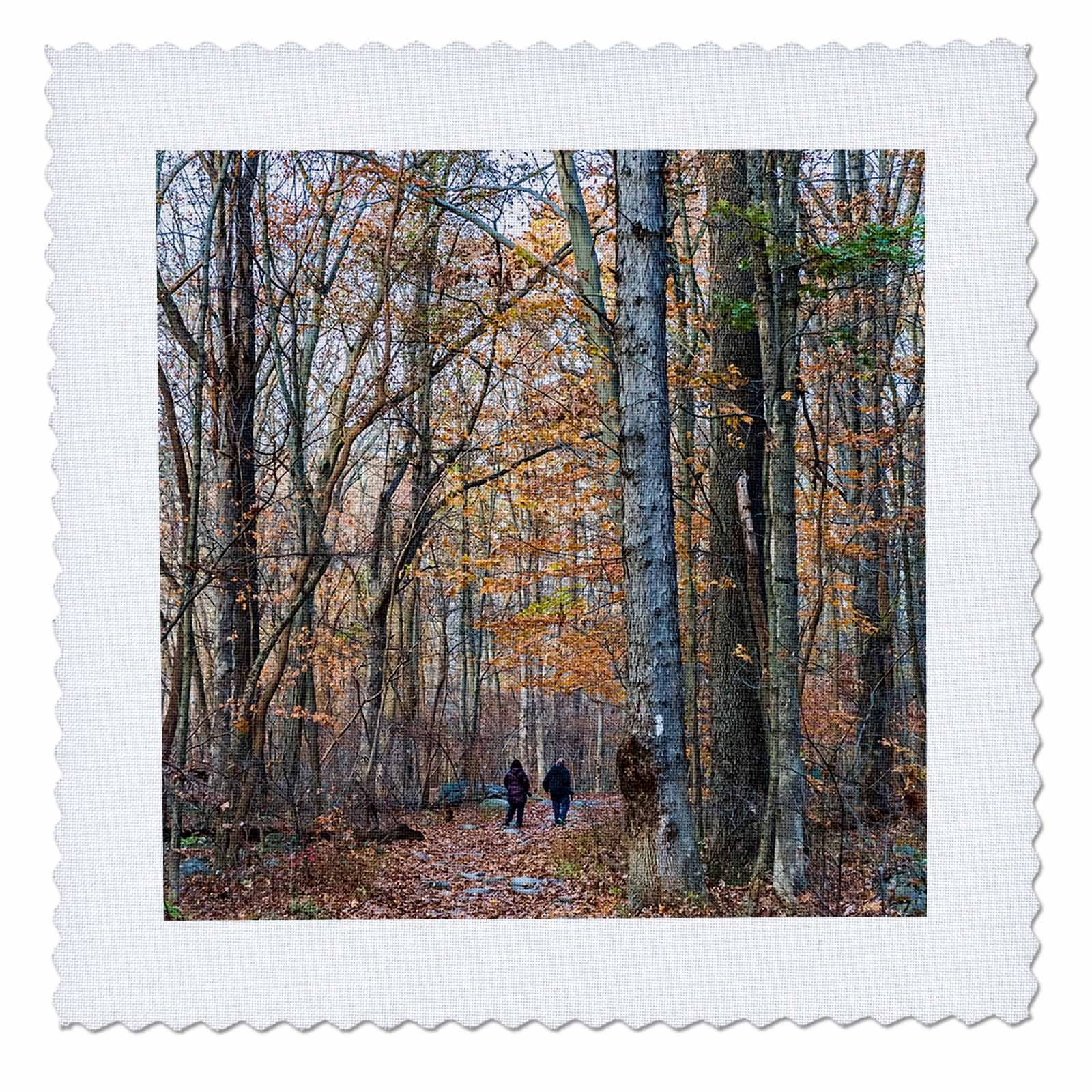 3dRose Roni Chastain Photography - Walk in the woods - 14x14 inch quilt square (qs_280457_5)